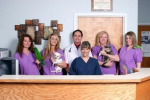 Meet Animal Hospital Staff